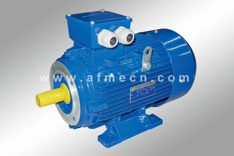 IE1 Standard Efficiency Three Phase AC Motors