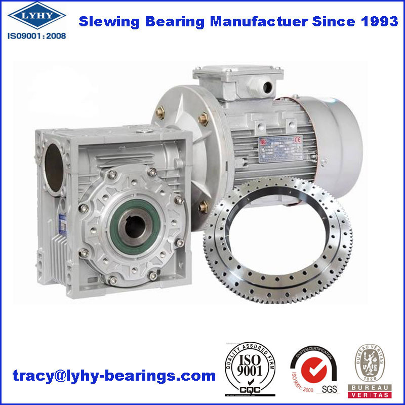 Slewing Bearing for Worm Gear Speed Reducer 010.20.224