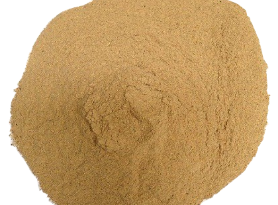 DRIED BREWER YEAST