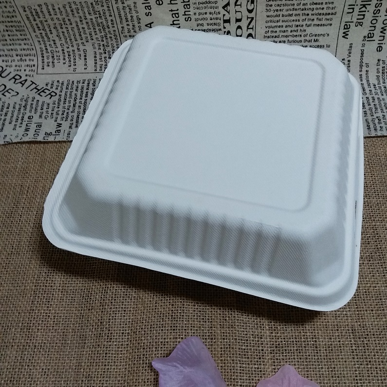 Sugar Cane Bagasse Food Box Biodegradable Takeaway Food Container