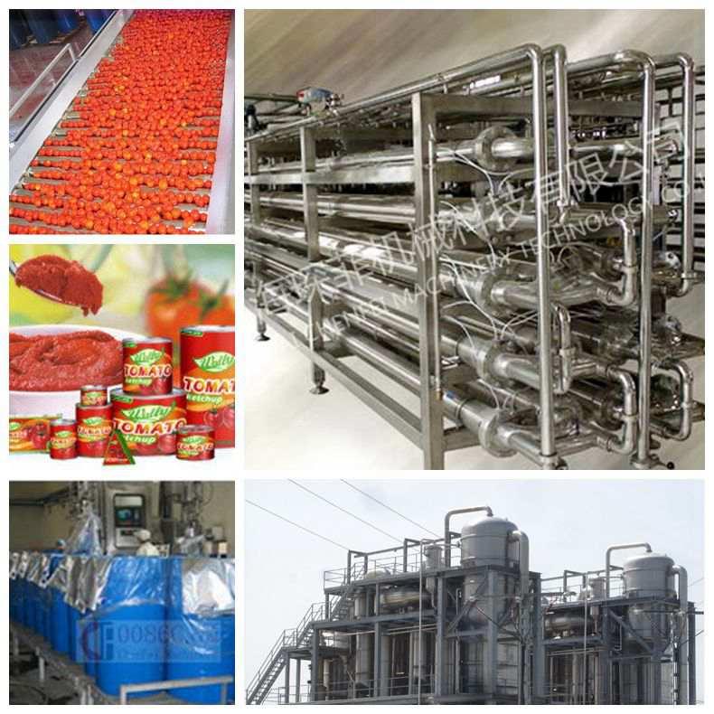 Tomato paste fruit paste production line machine