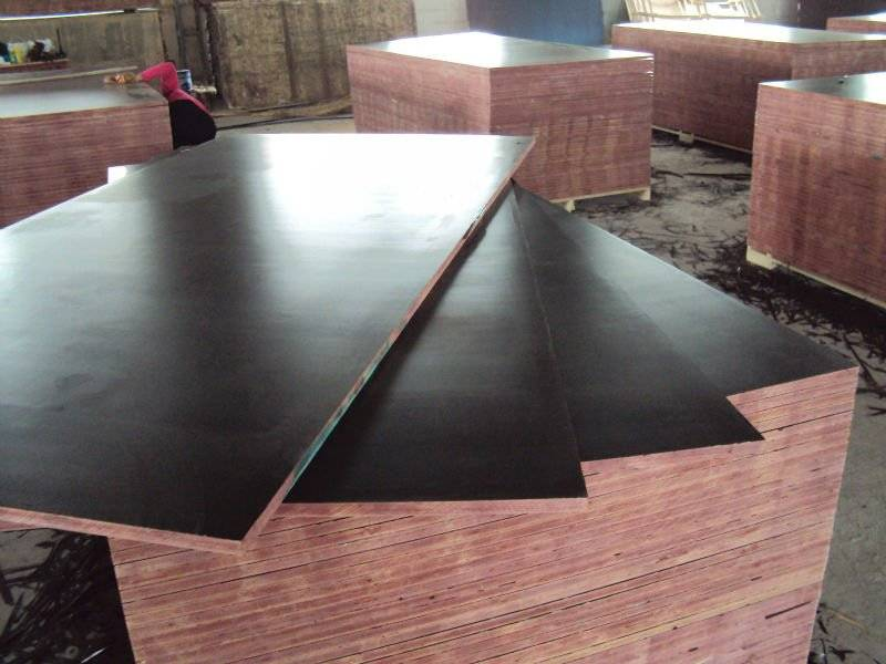 4x8/ 5x10' film faced plywood