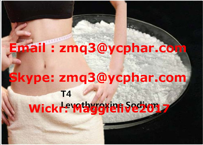 Safe delivery L - Thyroxine T4 CAS 51-48-9 for muscle building with high purity and reasonable price