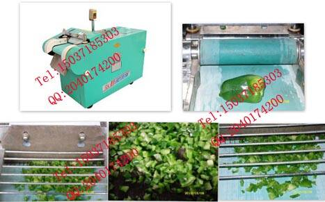 Stainless Steel vegetable and fruit cutting machine