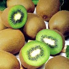 Fresh Kiwi frui