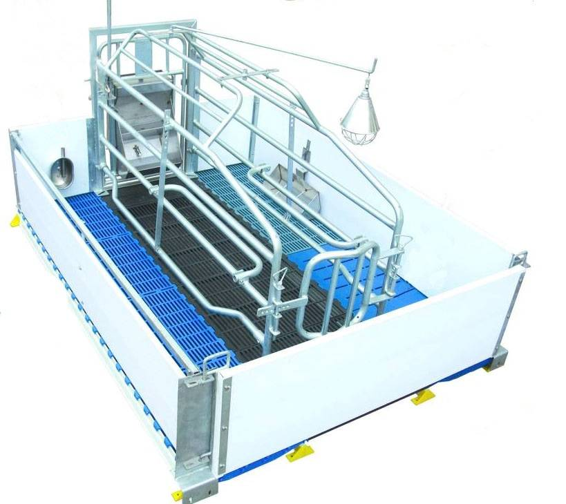 Pig Farming Equipment- Pig Farrowing crate