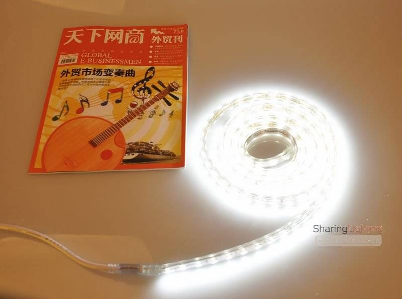 IP55 5050 led strips 60leds/m the lenght Can be extended 50M/Reel 220V Cool White LED rope light