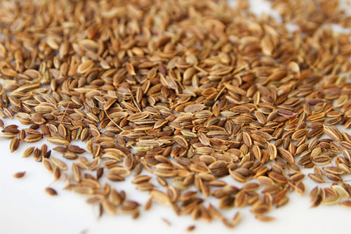 roasted dill seed