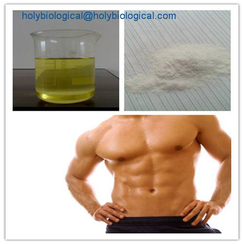 Quality Testosterone Undecanoate Steroid for The Treatment of Male Hypogonadism