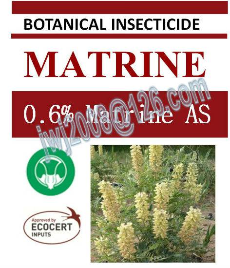 0.6% Matrine AS, biopesticide, organic insecticide, botanic, natural