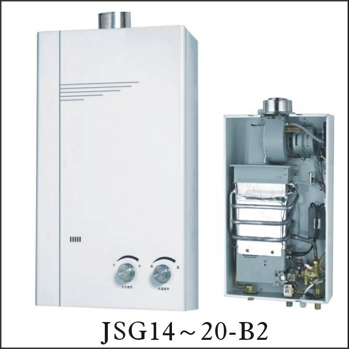 Gas water heater , flue exhaust/force Type
