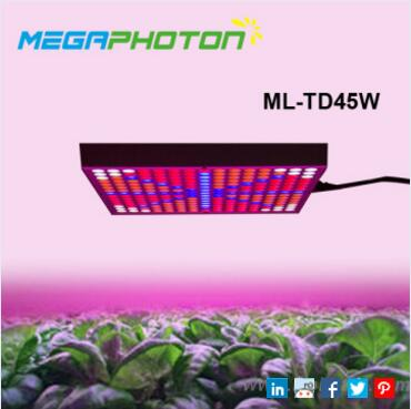 45w square red and blue spectrum led grow light for hobby plant
