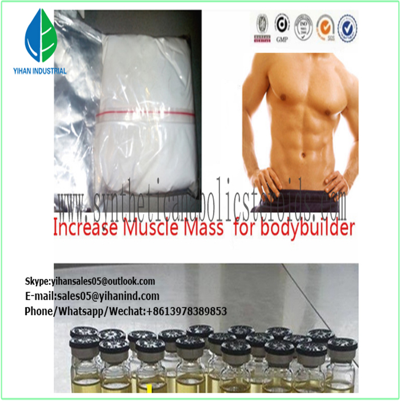 99% purity Testosterone Isocaproate Steroid Powder Raw Testosterone Isocaproate for Bodybuilding Le