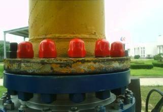 bolt/nut protection plug