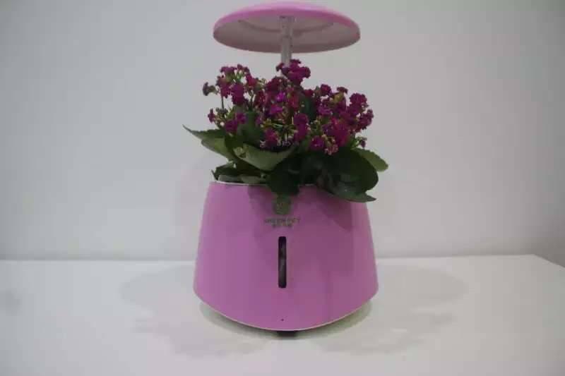Automatic led light flower plant pot indoor
