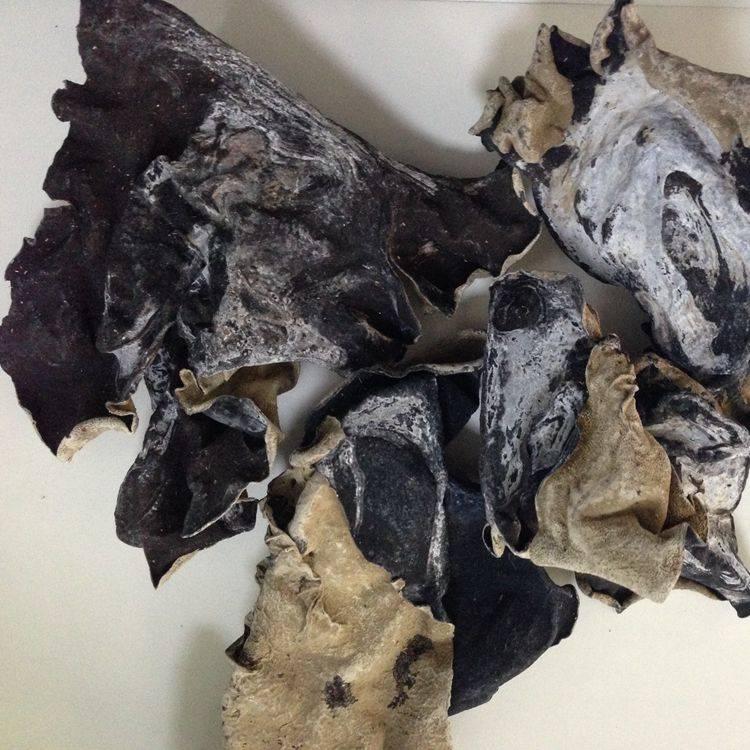 Dried White Back Black Fungus Mushroom
