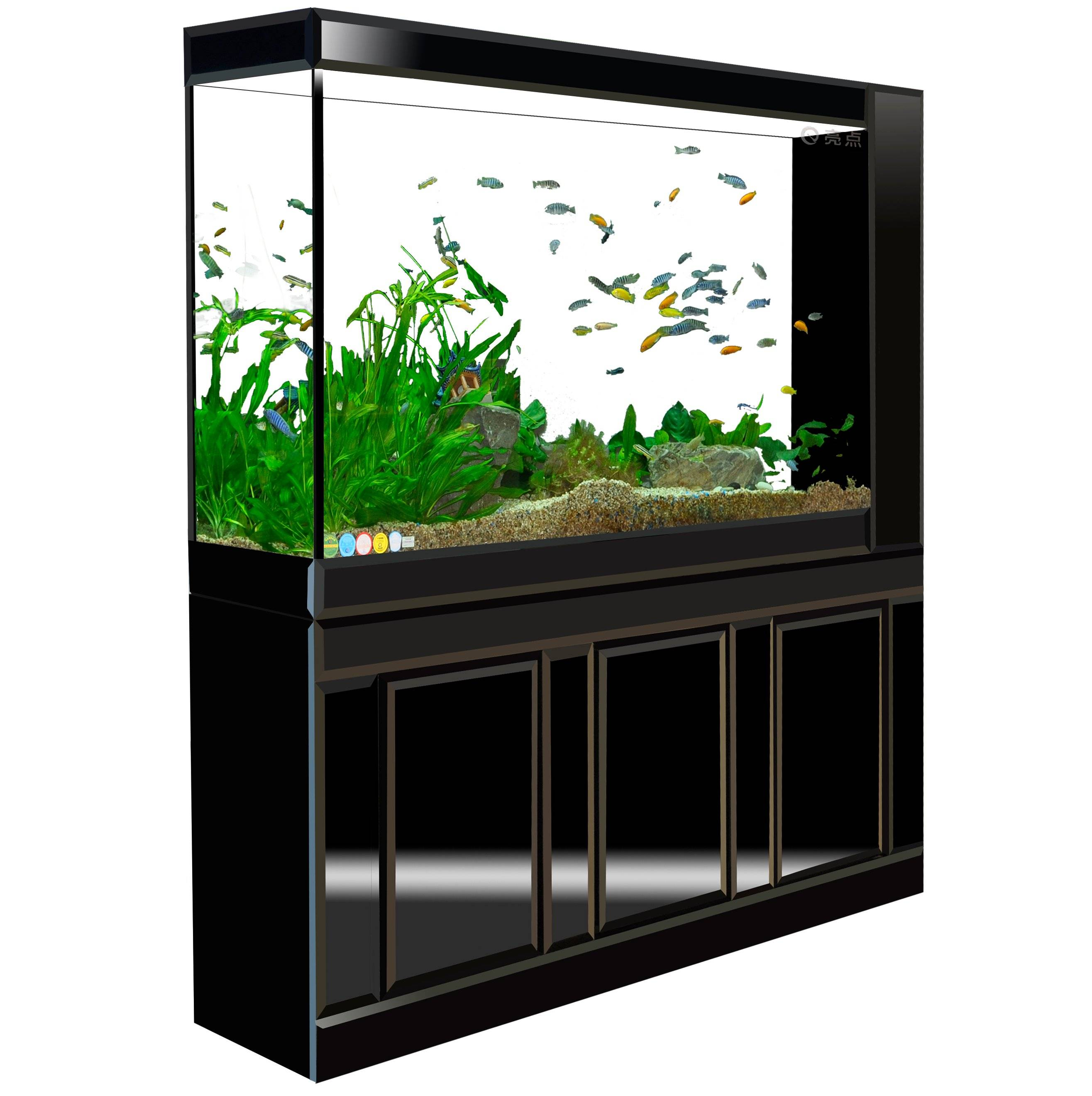 Glass 3-view cabinet