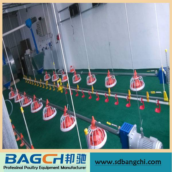Bangchi Competitive Price Poultry Farming Equipment for Broiler House