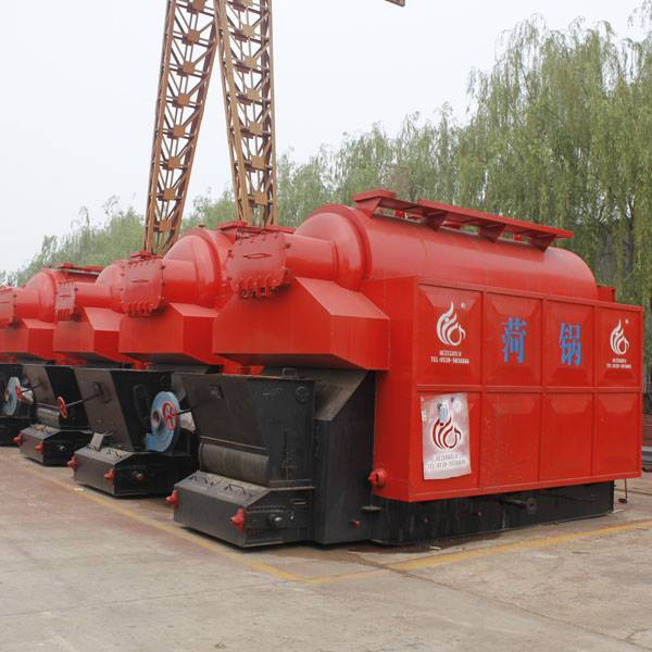 Horizontal coal or biomass fired chain grate steam boiler