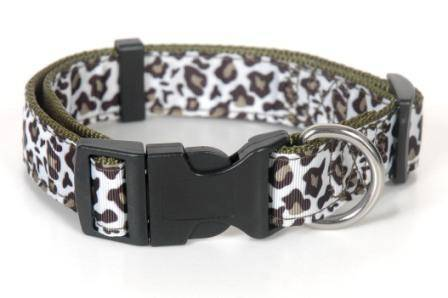 Quality dog leash & collar