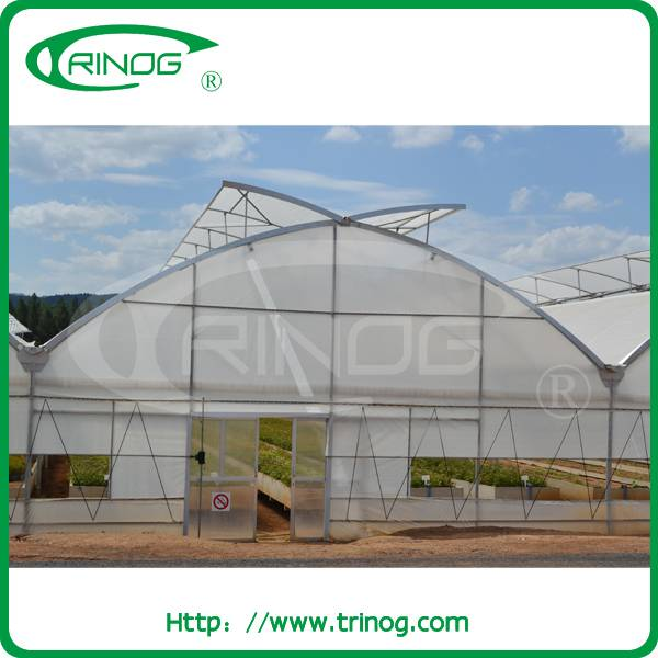 EU steel structure commercial greenhouse for sale