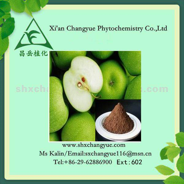 95% natural apple peel extract polyphenols powder