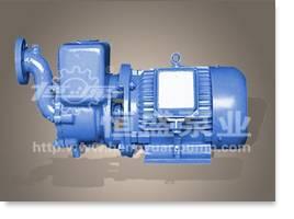 CWX Series Self-priming Centrifugal Vortex Pump
