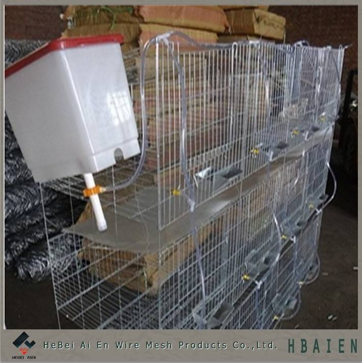 Commercial rabbit cage for 12 rabbits