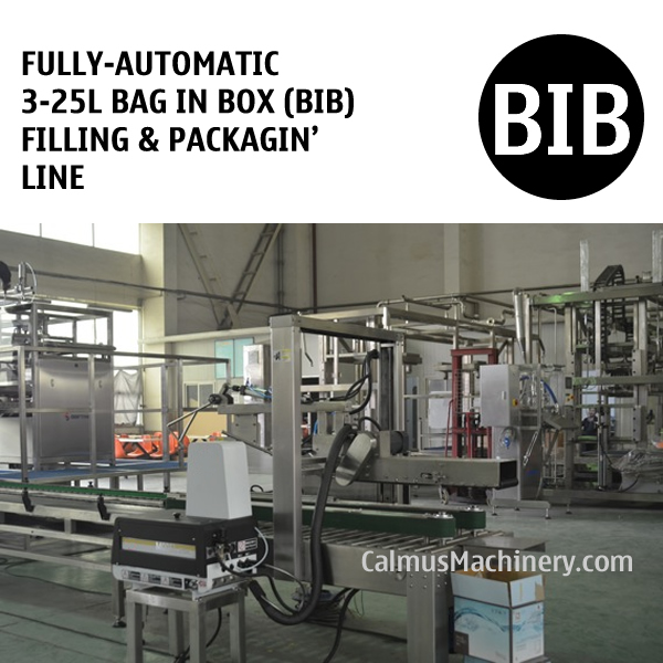 Fully-automatic 3-25L Bag in Box Water Wine Beverage Oil BIB Filling Machine and Packaging Line