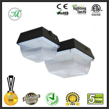 40W LED canopy light