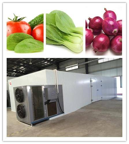 high temperature hot air herb dryer,air source heat pump technology,Intelligent temperature and humi