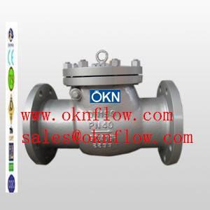 18  DIN 1.0619 flange check valve