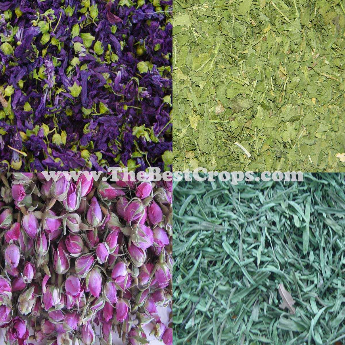 Iranian Herbal Tea, Top Quality (dried flowers, leaves, vegetables)