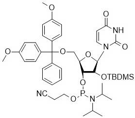 rU Phosphoramidite