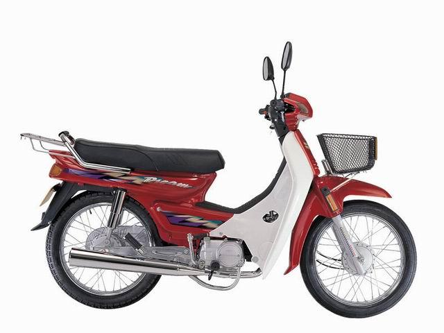 Cub 100cc, 110cc
