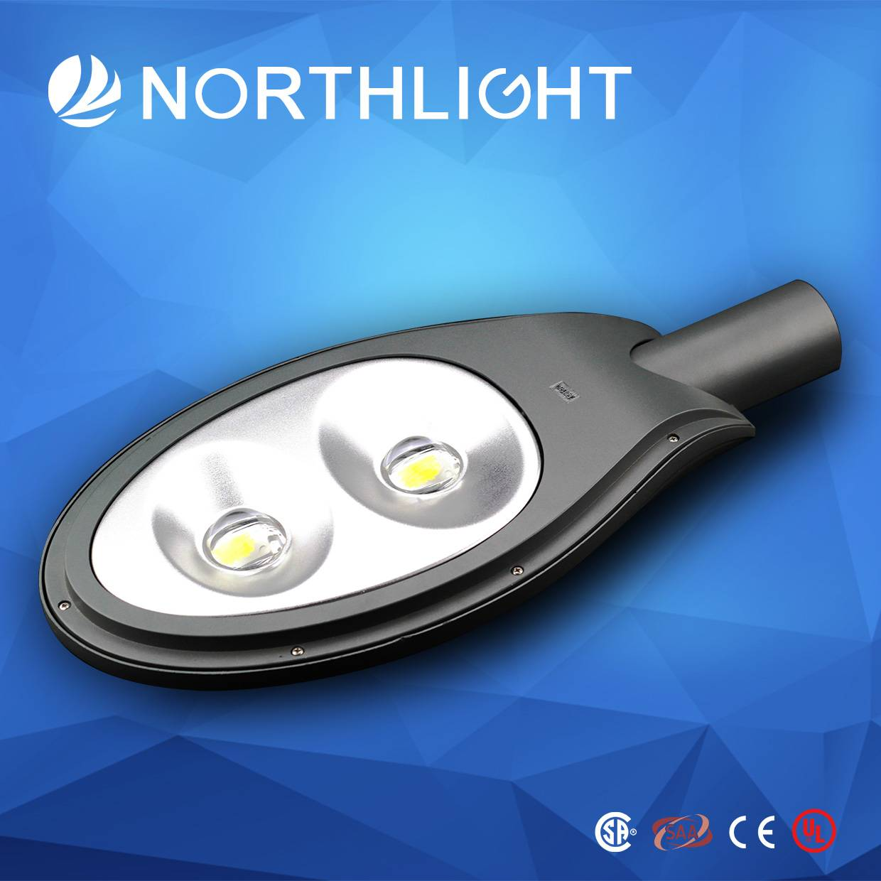 2015 hotsale IP66 LED street lights with CE/ROHS certificates