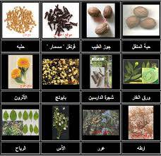 herbs&spices&seeds
