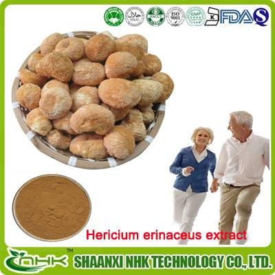 GMP manufacturer supply high quality hericium erinaceus extract