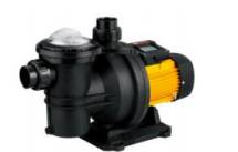 High Perfermance Swimming Pool Pump