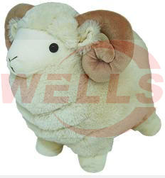 Kimy Goat, Wells-14510