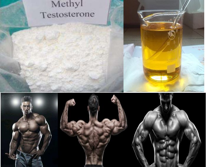 99% High Purity Methyltestosterone raw steroid powder for bodybuilding