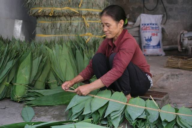 Dry Bamboo Leaves from Viet Nam with best price