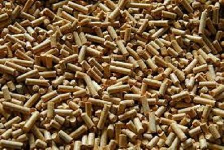 Wood Pellet and Wood Pellet Stove