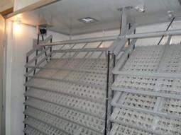 egg incubator OM-10
