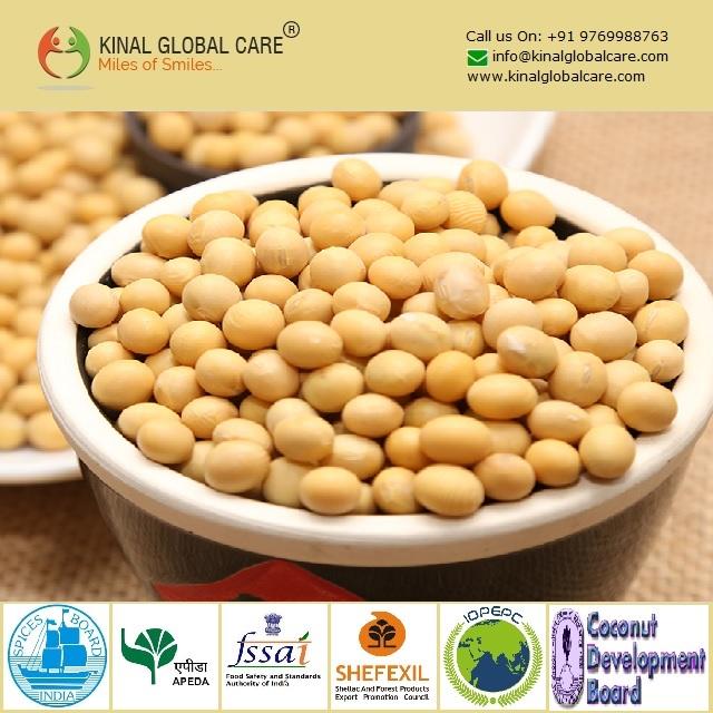 Best Grade Soybean Seeds