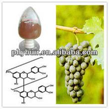 Grape Seed P.E.  polyphenol 95%