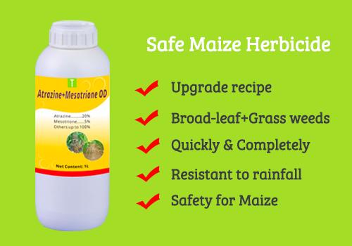 Atrazine 20%+Mesotrione 5% OD
