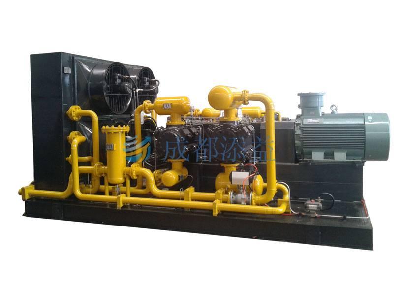 CNG Mother Station, Standard Station Compressor