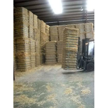 Top Quality Alfalfa Hay