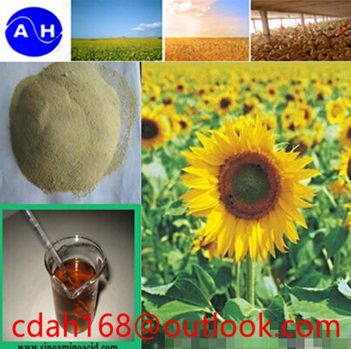 enzymolysisHigh content of amino acid powder 80% pure organic